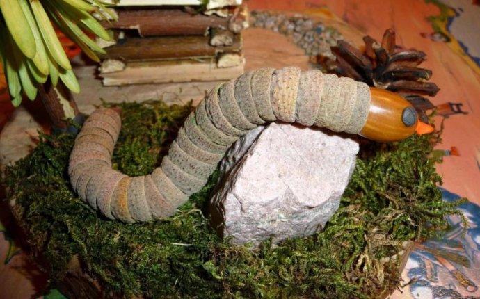 Поделки из природного материала — коллекция пользователя gaark